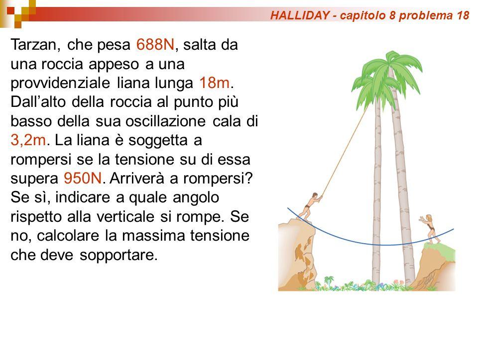 HALLIDAY - capitolo 8 problema 18 Tarzan, che pesa 688N, salta da una roccia appeso a una provvidenziale liana lunga 18m.