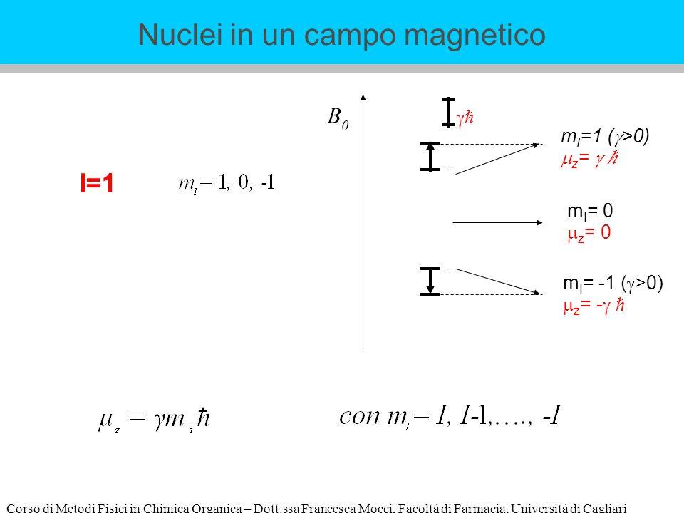 Corso di Metodi Fisici in Chimica Organica – Dott.ssa Francesca Mocci, Facoltà di Farmacia, Università di Cagliari m I =1 ( >0) z = m I = -1 ( >0) z = - m I = 0 z = 0 B0B0 Nuclei in un campo magnetico I=1