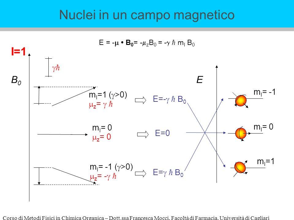 Corso di Metodi Fisici in Chimica Organica – Dott.ssa Francesca Mocci, Facoltà di Farmacia, Università di Cagliari E = - B 0 = - z B 0 = - m I B 0 I=1 E m I =1 m I = -1 B0B0 m I =1 ( >0) z = m I = -1 ( >0) z = - E=- B 0 E= B 0 m I = 0 z = 0 E=0 m I = 0 Nuclei in un campo magnetico