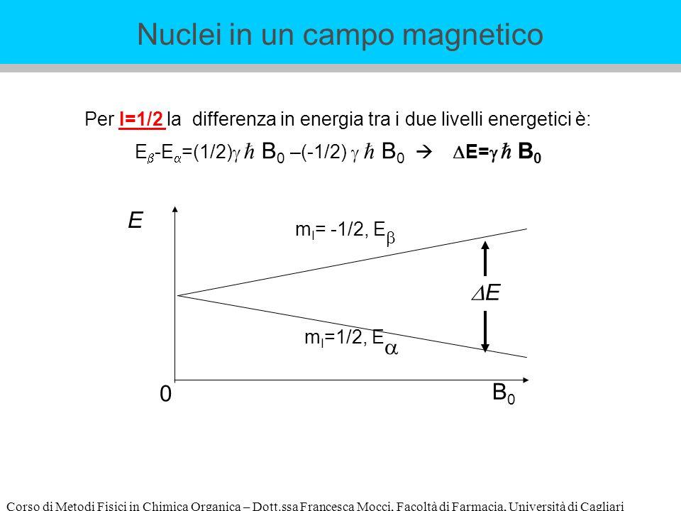 Corso di Metodi Fisici in Chimica Organica – Dott.ssa Francesca Mocci, Facoltà di Farmacia, Università di Cagliari Per I=1/2 la differenza in energia tra i due livelli energetici è: E -E =(1/2) B 0 –(-1/2) B 0 E= B 0 E B0B0 E m I =1/2, E m I = -1/2, E 0 Nuclei in un campo magnetico