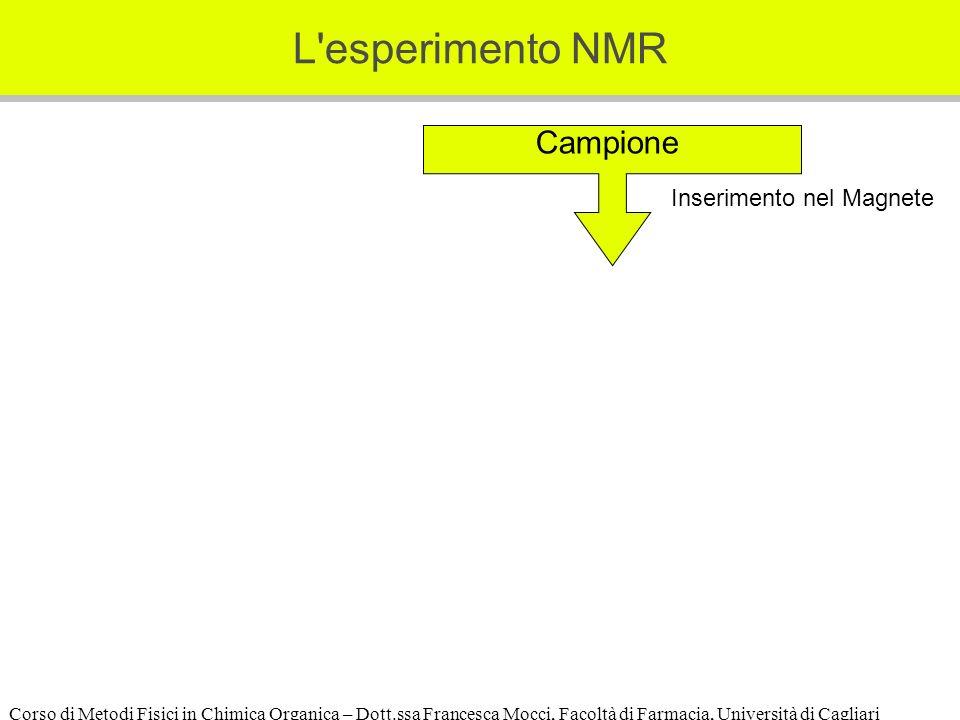 Corso di Metodi Fisici in Chimica Organica – Dott.ssa Francesca Mocci, Facoltà di Farmacia, Università di Cagliari L esperimento NMR Campione Inserimento nel Magnete