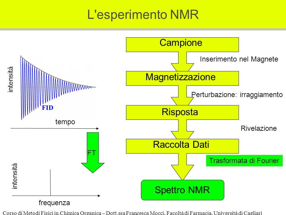 Corso di Metodi Fisici in Chimica Organica – Dott.ssa Francesca Mocci, Facoltà di Farmacia, Università di Cagliari L esperimento NMR Perturbazione: irraggiamento Campione Inserimento nel Magnete Magnetizzazione Risposta Rivelazione Raccolta Dati Spettro NMR Trasformata di Fourier frequenza intensità FT tempo intensità