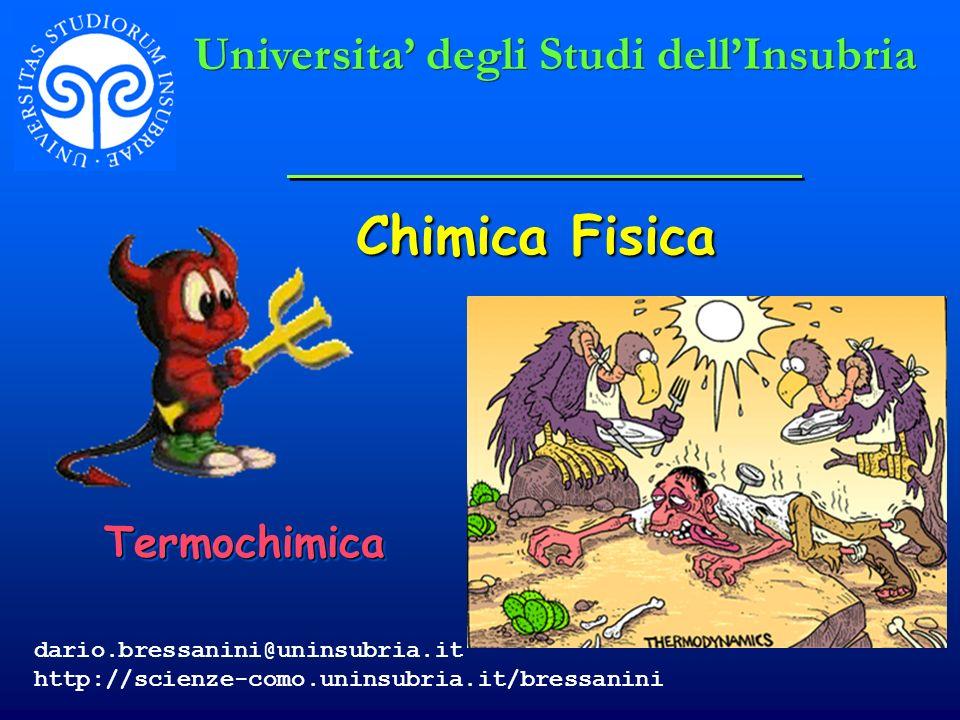 Chimica Fisica TermochimicaTermochimica Universita degli Studi dellInsubria dario.bressanini@uninsubria.it http://scienze-como.uninsubria.it/bressanin