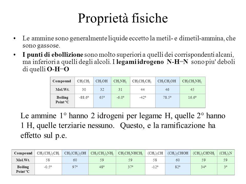 Proprietà fisiche Le ammine sono generalmente liquide eccetto la metil- e dimetil-ammina, che sono gassose. I punti di ebollizione sono molto superior