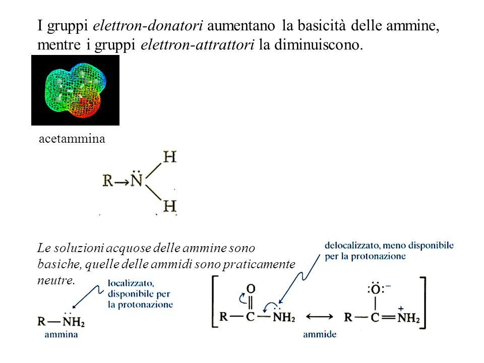 I gruppi elettron-donatori aumentano la basicità delle ammine, mentre i gruppi elettron-attrattori la diminuiscono. Le soluzioni acquose delle ammine