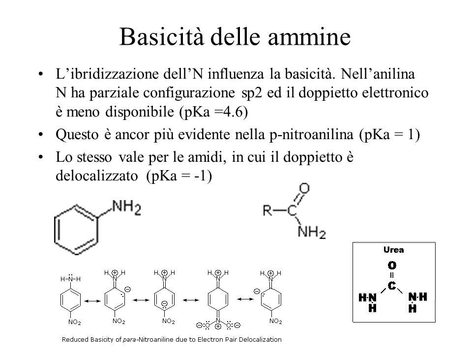 Basicità delle ammine Libridizzazione dellN influenza la basicità. Nellanilina N ha parziale configurazione sp2 ed il doppietto elettronico è meno dis