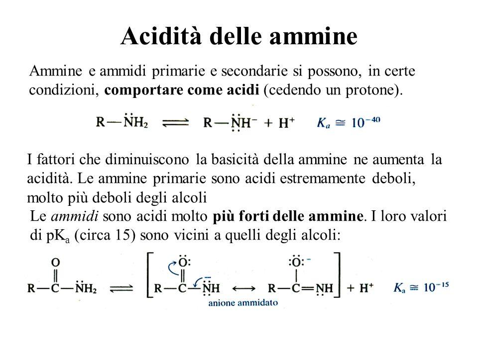 Acidità delle ammine Le ammidi sono acidi molto più forti delle ammine. I loro valori di pK a (circa 15) sono vicini a quelli degli alcoli: Ammine e a