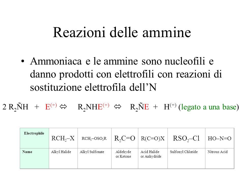 Reazioni delle ammine Ammoniaca e le ammine sono nucleofili e danno prodotti con elettrofili con reazioni di sostituzione elettrofila dellN 2 R 2 ÑH +