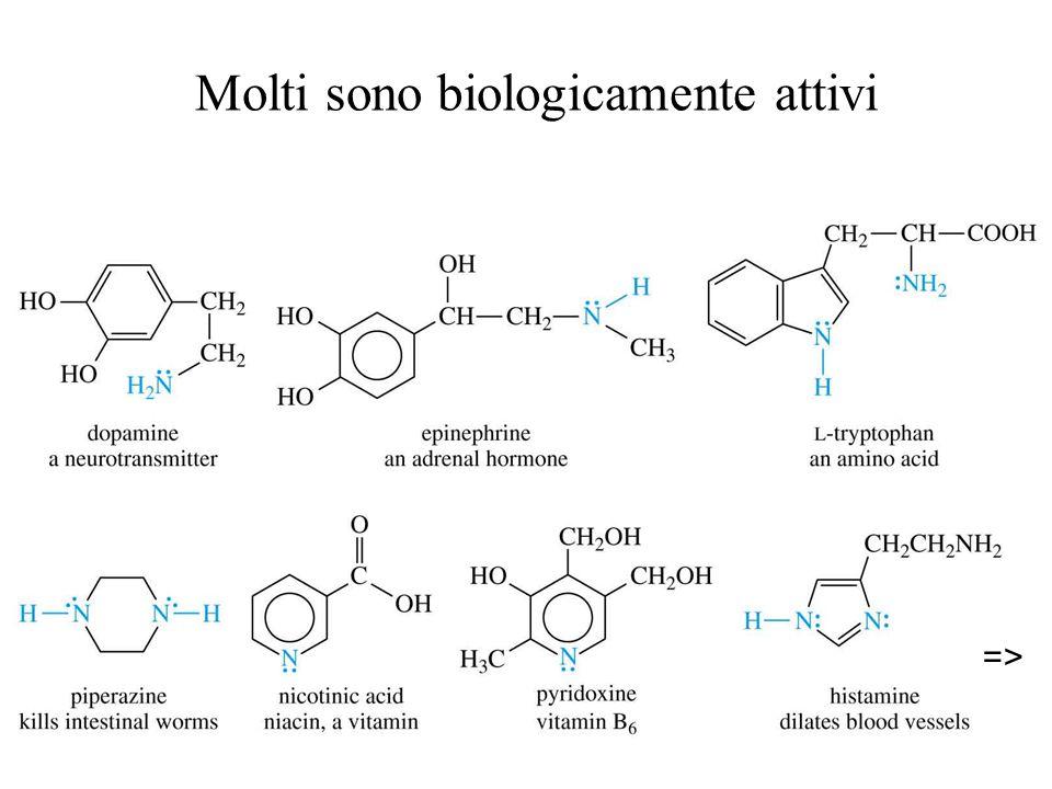 Molti sono biologicamente attivi =>