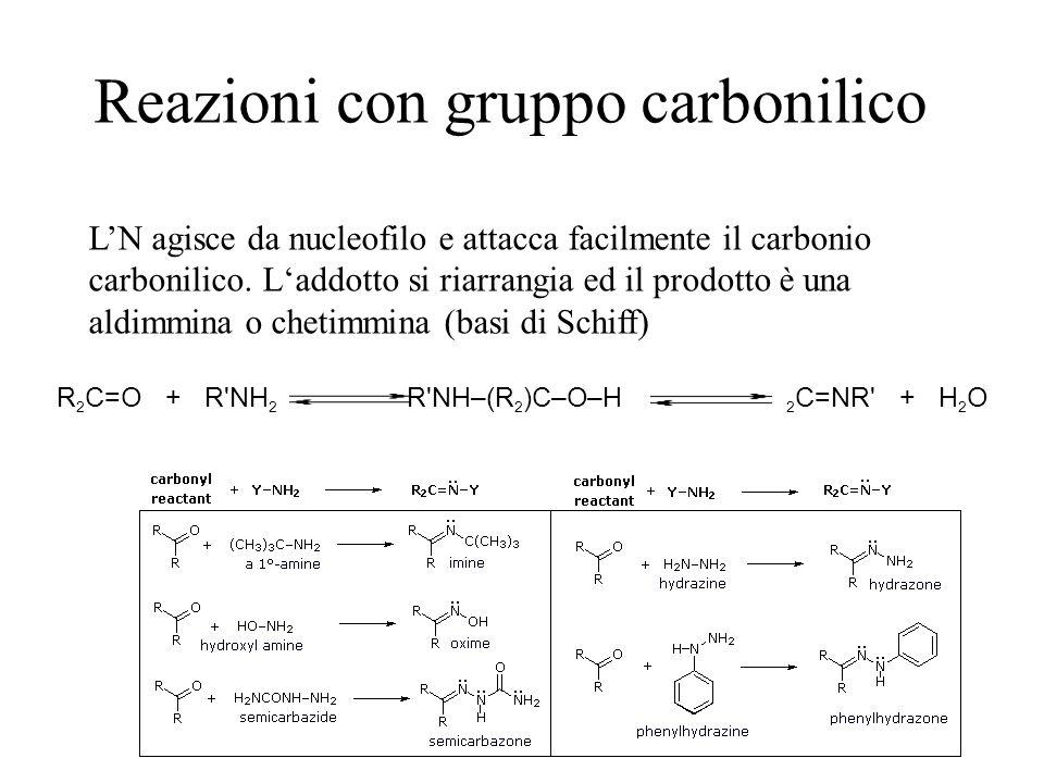 Reazioni con gruppo carbonilico LN agisce da nucleofilo e attacca facilmente il carbonio carbonilico. Laddotto si riarrangia ed il prodotto è una aldi