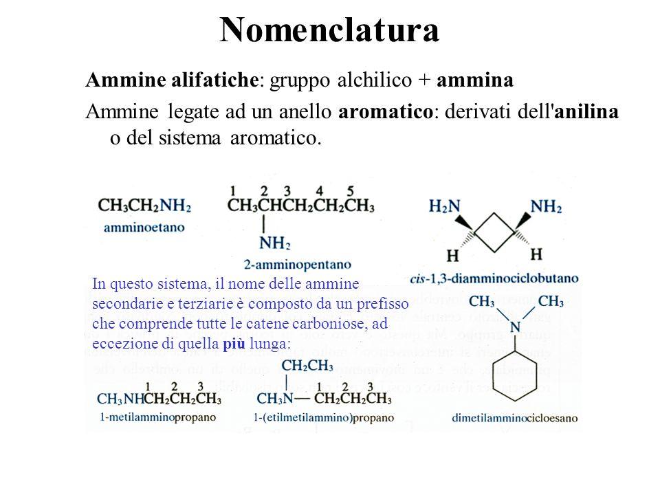 Nomenclatura Ammine alifatiche: gruppo alchilico + ammina Ammine legate ad un anello aromatico: derivati dell'anilina o del sistema aromatico. In ques