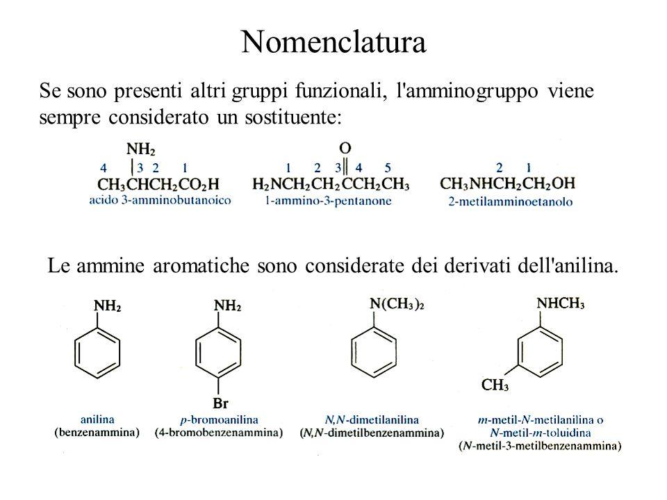Nomenclatura Se sono presenti altri gruppi funzionali, l'amminogruppo viene sempre considerato un sostituente: Le ammine aromatiche sono considerate d