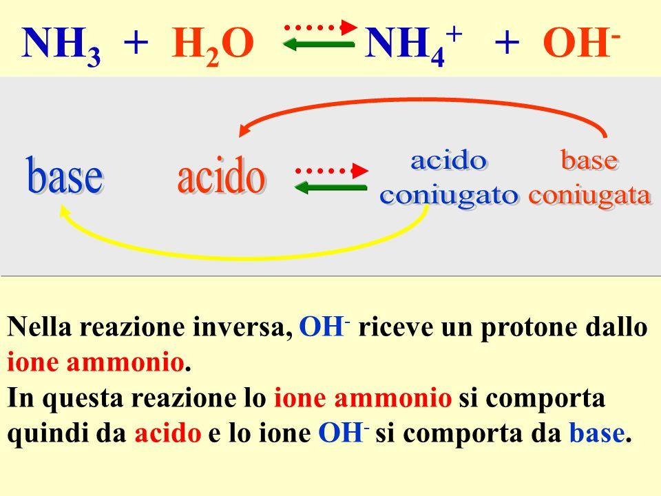 NH 3 + H 2 O NH 4 + + OH - Nella reazione inversa, OH - riceve un protone dallo ione ammonio. In questa reazione lo ione ammonio si comporta quindi da