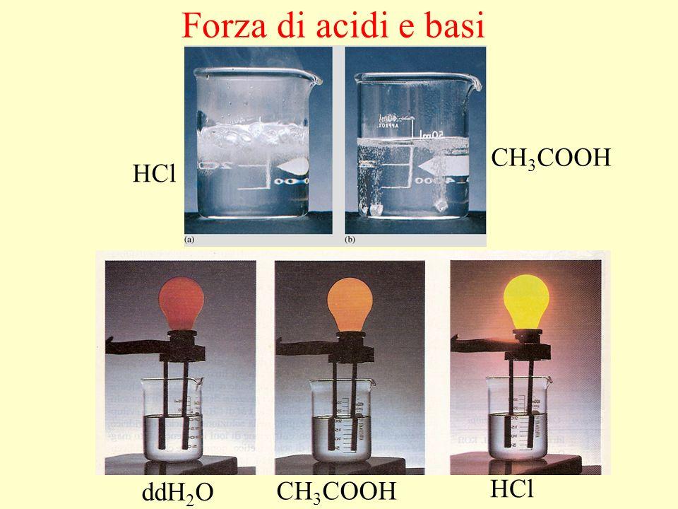 Forza di acidi e basi ddH 2 O CH 3 COOH HCl CH 3 COOH HCl Mg