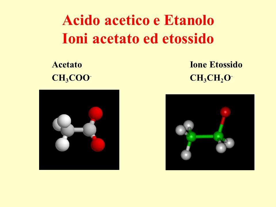 Acido acetico e Etanolo Ioni acetato ed etossido Acetato Ione Etossido CH 3 COO - CH 3 CH 2 O -