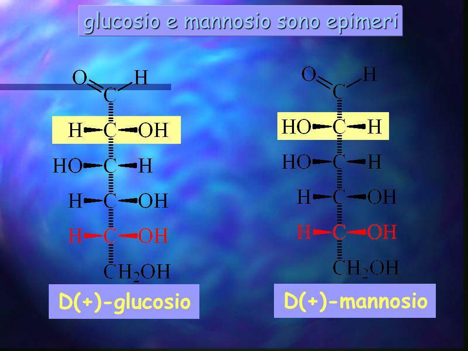 glucosio e mannosio sono epimeri D(+)-mannosio