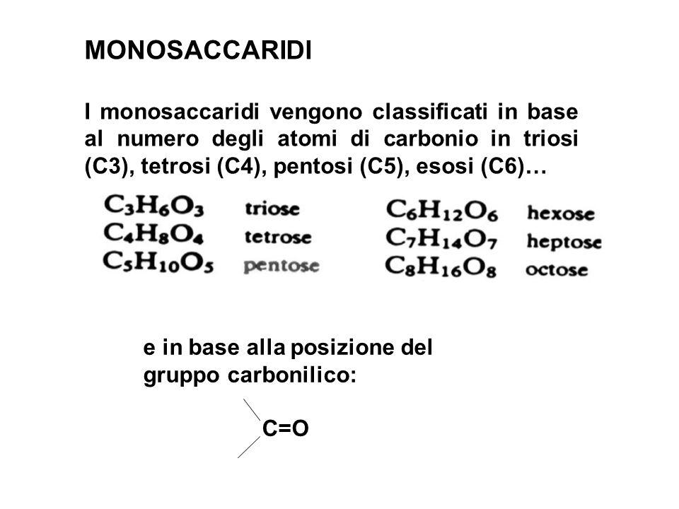 MONOSACCARIDI I monosaccaridi vengono classificati in base al numero degli atomi di carbonio in triosi (C3), tetrosi (C4), pentosi (C5), esosi (C6)… e