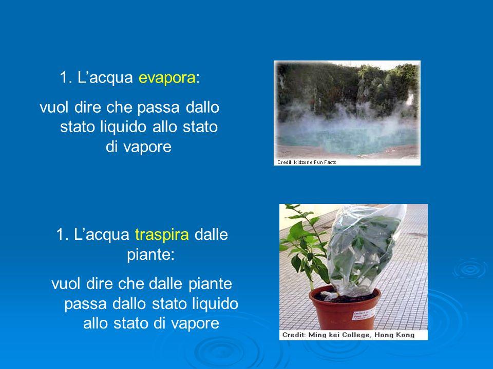 1.Lacqua evapora: vuol dire che passa dallo stato liquido allo stato di vapore 1.Lacqua traspira dalle piante: vuol dire che dalle piante passa dallo