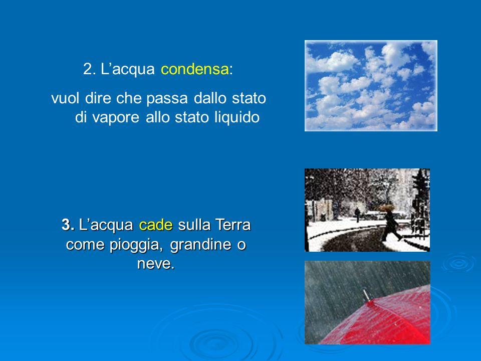 3. Lacqua cade sulla Terra come pioggia, grandine o neve. 2. Lacqua condensa: vuol dire che passa dallo stato di vapore allo stato liquido