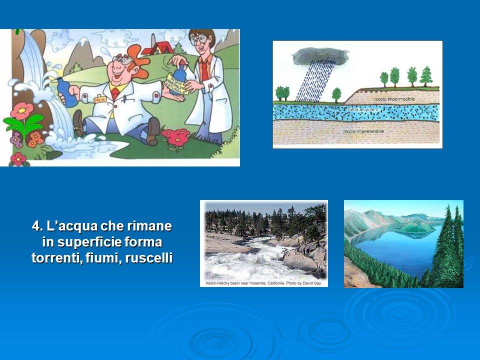 4. Lacqua che cade sulla terra va nel terreno fino alle acque sotterranee 4. Lacqua che rimane in superficie forma torrenti, fiumi, ruscelli