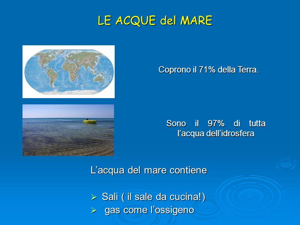 LE ACQUE del MARE Sono il 97% di tutta lacqua dellidrosfera Lacqua del mare contiene Sali ( il sale da cucina!) Sali ( il sale da cucina!) gas come lo