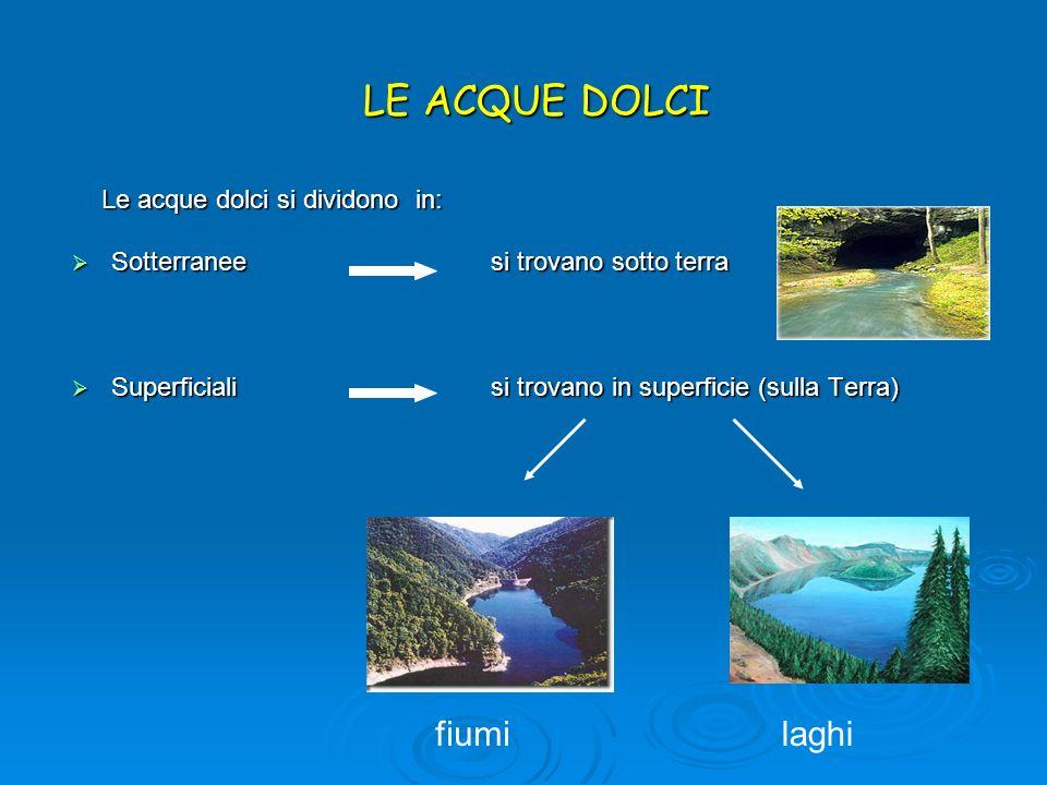LE ACQUE DOLCI Le acque dolci si dividono in: Le acque dolci si dividono in: Sotterranee si trovano sotto terra Sotterranee si trovano sotto terra Sup