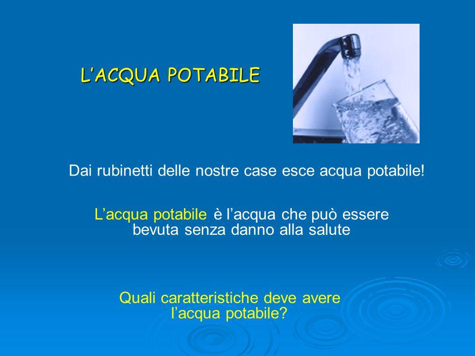 LACQUA POTABILE Lacqua potabile è lacqua che può essere bevuta senza danno alla salute Dai rubinetti delle nostre case esce acqua potabile! Quali cara