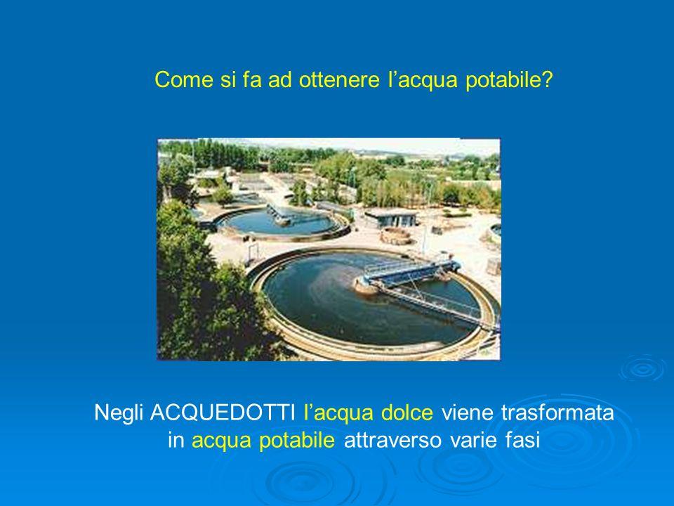 Negli ACQUEDOTTI lacqua dolce viene trasformata in acqua potabile attraverso varie fasi Come si fa ad ottenere lacqua potabile?