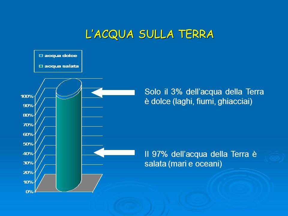LACQUA SULLA TERRA Solo il 3% dellacqua della Terra è dolce (laghi, fiumi, ghiacciai) Il 97% dellacqua della Terra è salata (mari e oceani)