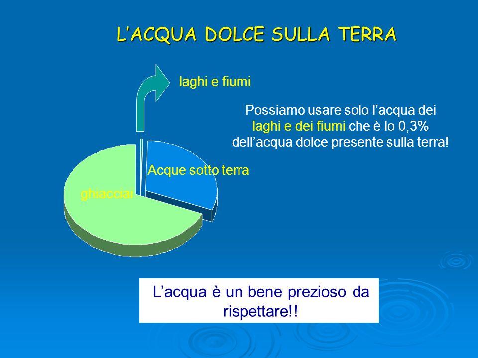 LACQUA DOLCE SULLA TERRA Possiamo usare solo lacqua dei laghi e dei fiumi che è lo 0,3% dellacqua dolce presente sulla terra! Lacqua è un bene prezios