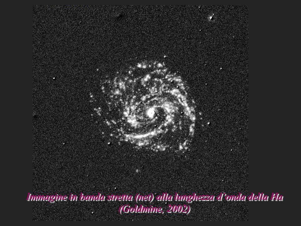 Immagine in banda stretta (net) alla lunghezza donda della Ha (Goldmine, 2002)