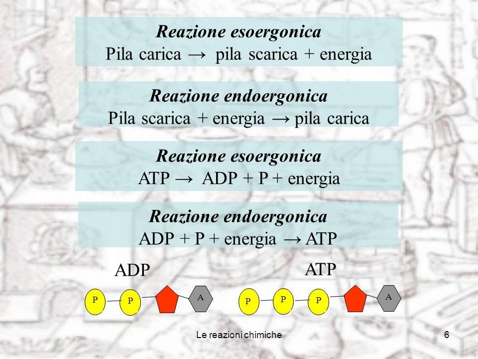 Le reazioni chimiche6 A P P P ATP Reazione endoergonica Pila scarica + energia pila carica Reazione esoergonica Pila carica pila scarica + energia A P P ADP Reazione esoergonica ATP ADP + P + energia Reazione endoergonica ADP + P + energia ATP