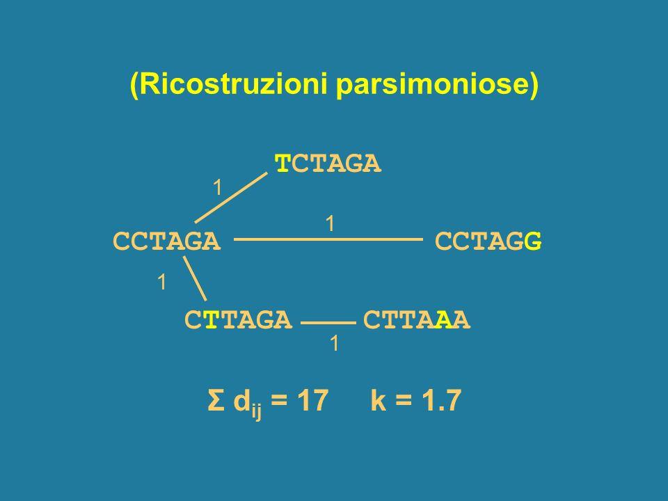 (Ricostruzioni parsimoniose) TCTAGA CCTAGA CCTAGG CTTAGA CTTAAA 1 1 1 1 Σ d ij = 17 k = 1.7