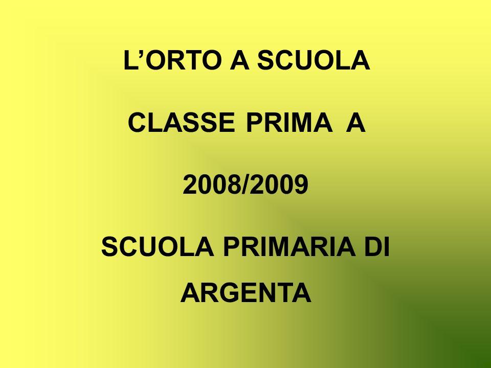 LORTO A SCUOLA CLASSE PRIMA A 2008/2009 SCUOLA PRIMARIA DI ARGENTA