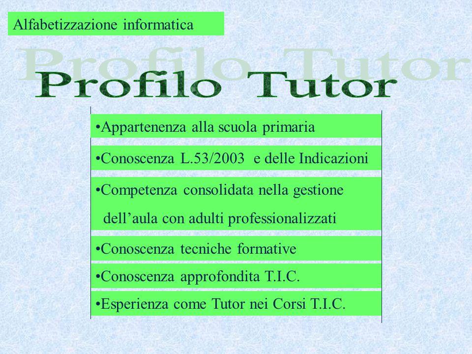 Conoscenza L.53/2003 e delle Indicazioni Competenza consolidata nella gestione dellaula con adulti professionalizzati Conoscenza tecniche formative Co