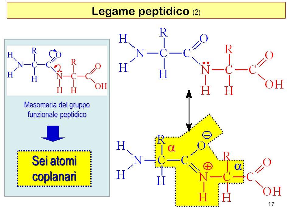 Legame peptidico (2) 17 Mesomeria del gruppo funzionale peptidico Sei atomi coplanari