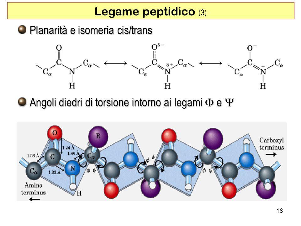 Planarità e isomeria cis/trans Angoli diedri di torsione intorno ai legami e Angoli diedri di torsione intorno ai legami e Legame peptidico (3) 18