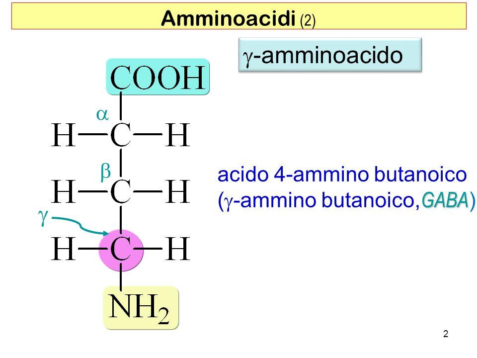 2 acido 4-ammino butanoico GABA ( -ammino butanoico, GABA ) Amminoacidi (2) -amminoacido