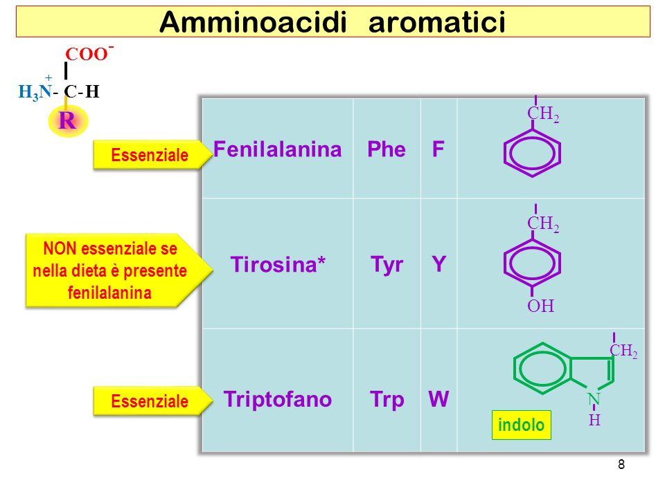Amminoacidi aromatici R COO - C-HH3N-H3N- + N H CH 2 OH CH 2 Essenziale indolo 8 NON essenziale se nella dieta è presente fenilalanina NON essenziale