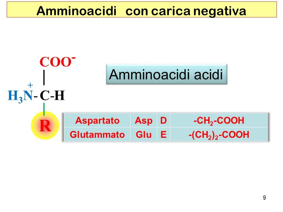 Amminoacidi con carica negativa RR COO - C-HH3N-H3N- + Amminoacidi acidi 9