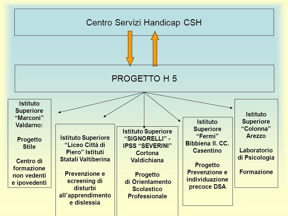 Centro Servizi Handicap CSH PROGETTO H 5 Istituto Superiore Fermi Bibbiena II.