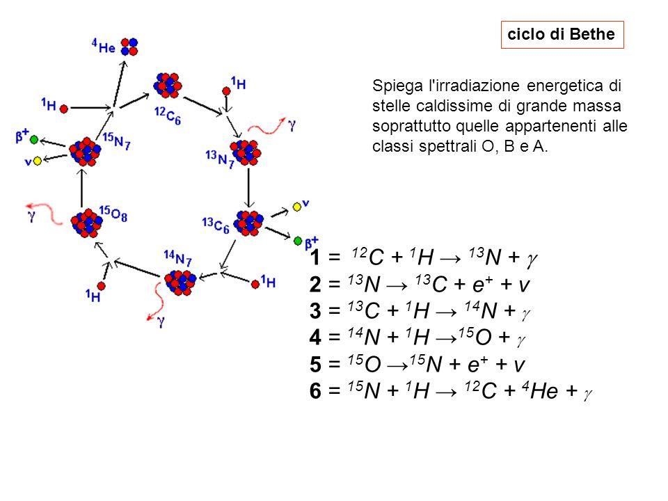 ciclo di Bethe 1 = 12 C + 1 H 13 N + 2 = 13 N 13 C + e + + v 3 = 13 C + 1 H 14 N + 4 = 14 N + 1 H 15 O + 5 = 15 O 15 N + e + + v 6 = 15 N + 1 H 12 C +