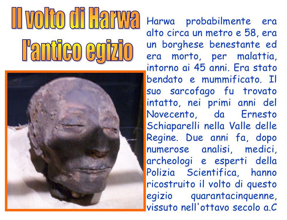 Harwa probabilmente era alto circa un metro e 58, era un borghese benestante ed era morto, per malattia, intorno ai 45 anni. Era stato bendato e mummi