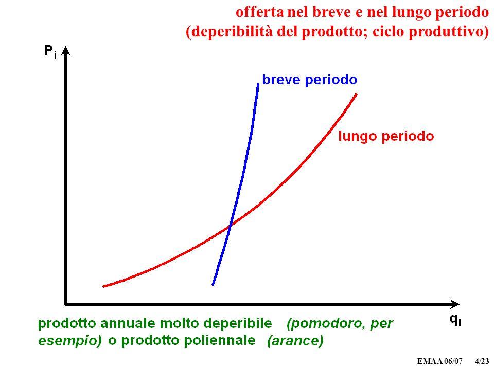 EMAA 06/07 4/23 offerta nel breve e nel lungo periodo (deperibilità del prodotto; ciclo produttivo)