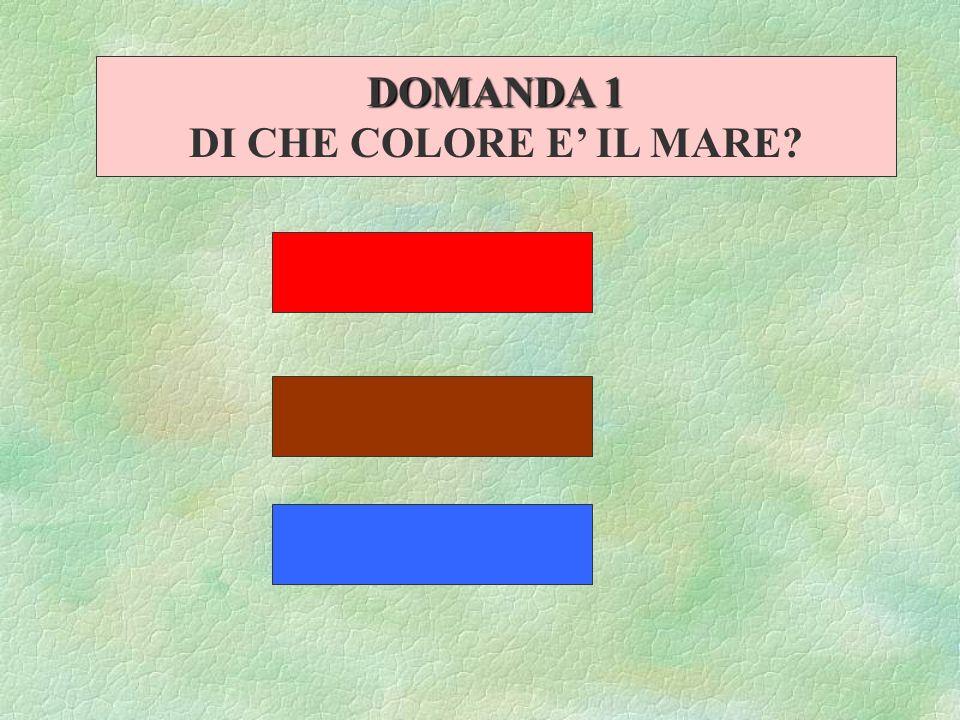 DOMANDA 1 DI CHE COLORE E IL MARE?