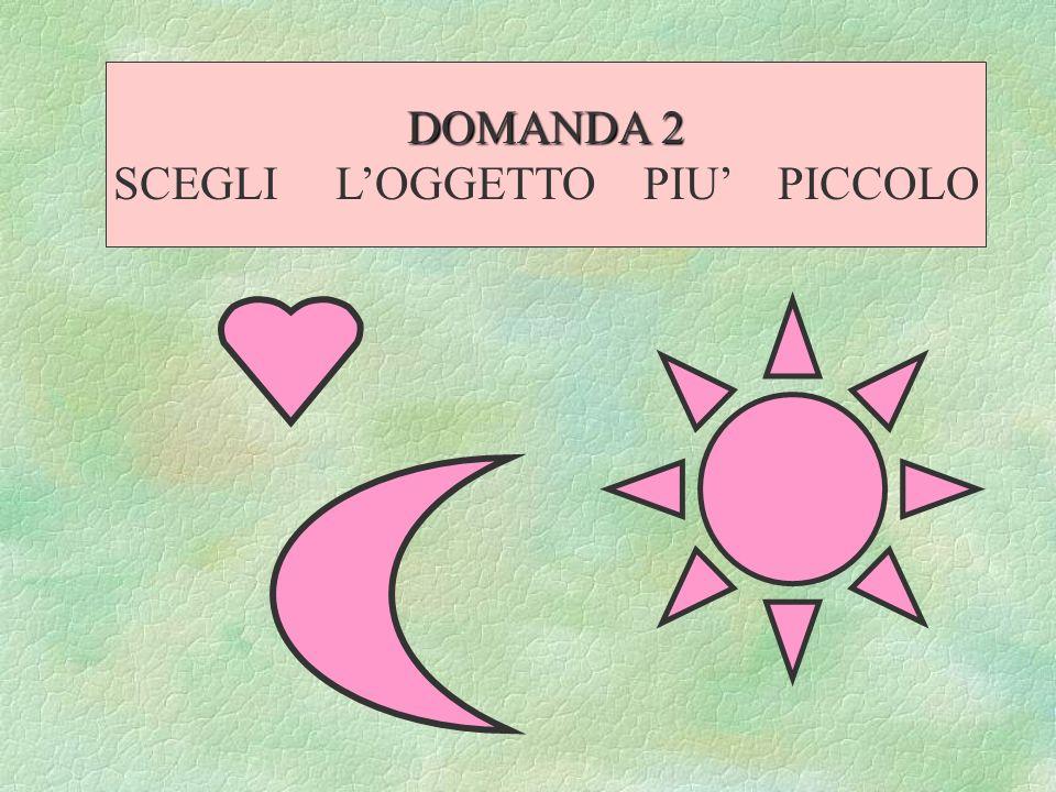 DOMANDA 2 SCEGLI LOGGETTO PIU PICCOLO