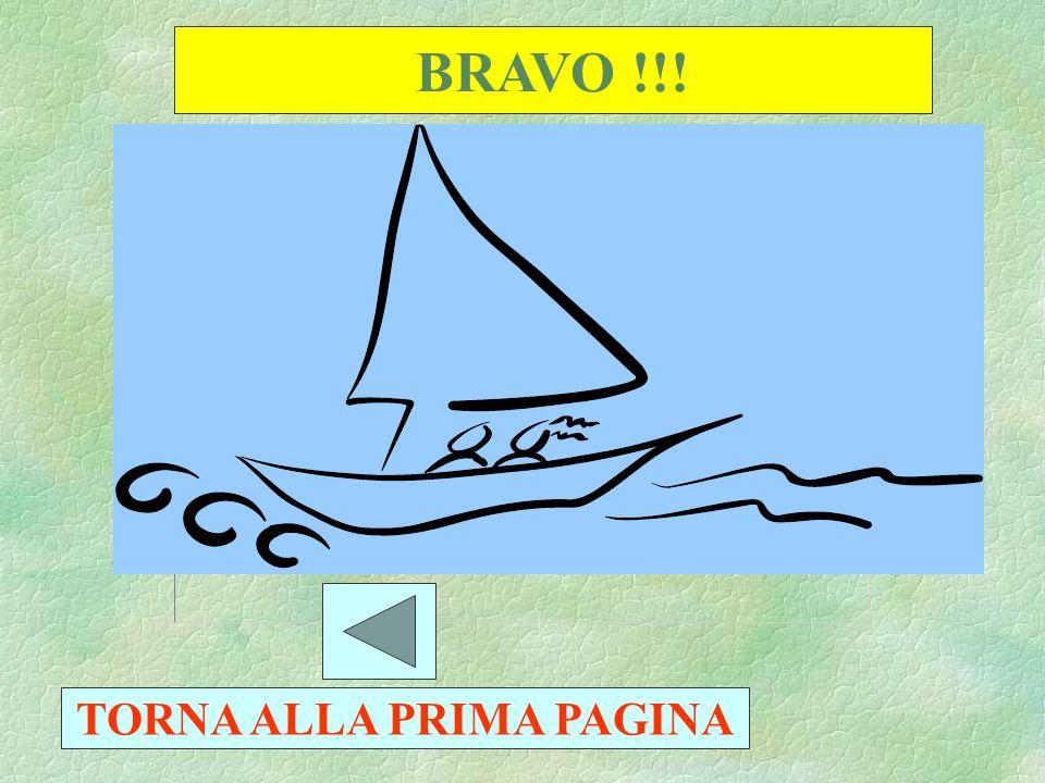 BRAVO !!! 10