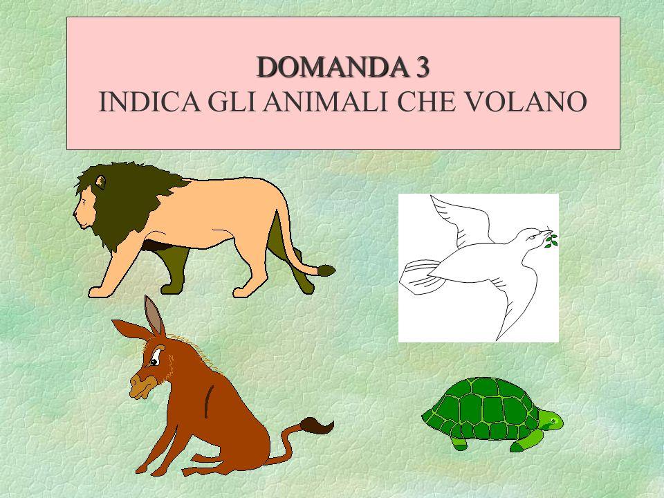 DOMANDA 3 INDICA GLI ANIMALI CHE VOLANO