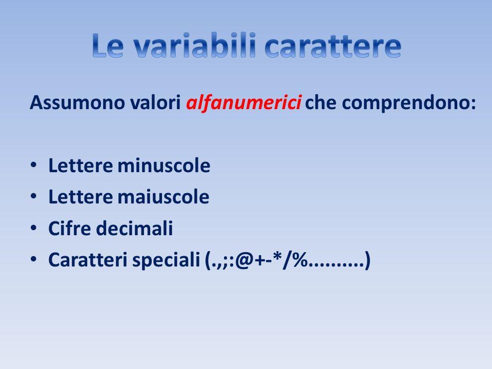 Assumono valori alfanumerici che comprendono: Lettere minuscole Lettere maiuscole Cifre decimali Caratteri speciali (.,;:@+-*/%..........)