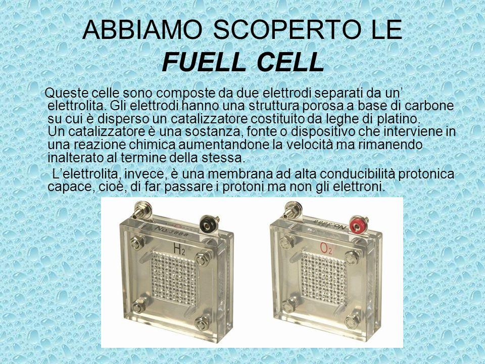 ABBIAMO SCOPERTO LE FUELL CELL Queste celle sono composte da due elettrodi separati da un elettrolita. Gli elettrodi hanno una struttura porosa a base